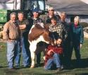 The Farmer's Cow